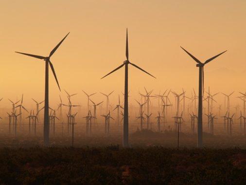 Ветровая электростанция Мэпл Ридж